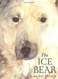 ice-bear