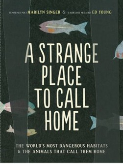 strange place to call home