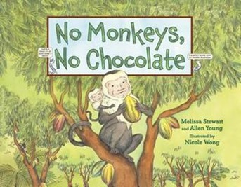 no monkeys no chocolate