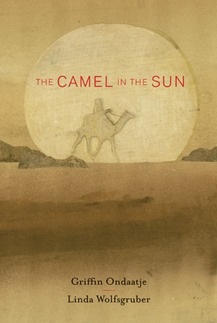camel in the sun