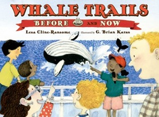 whale trails