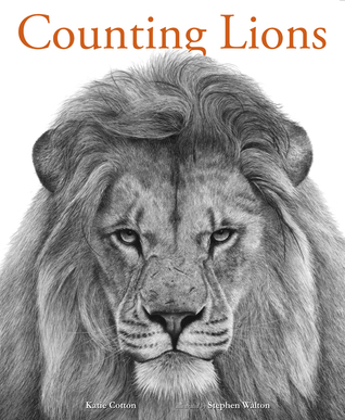 Counting Lions by Katie Cotton