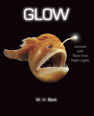Glow by WH Beck
