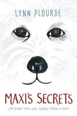 Maxis Secrets by Lynn Plourde