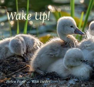 Wake Up by Helen Frost
