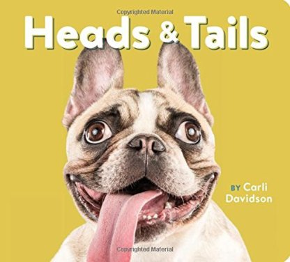 Heads and Tails by Carli Davidson