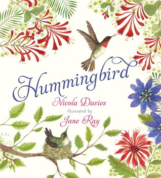 Hummingbird by Nicola Davies
