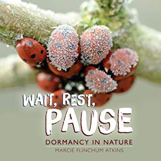 Wait, Rest, Pause Dormancy in Nature by Marcie Flinchum Atkins