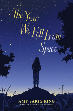The Year We Fell from Space by Amy Sarig King