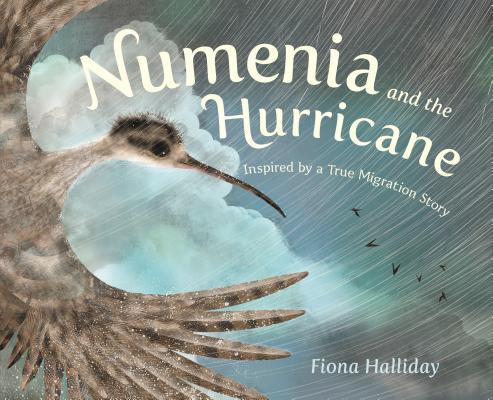 Numenia and the Hurricane by Fiona Halliday