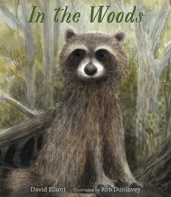 In the Woods by David Elliott
